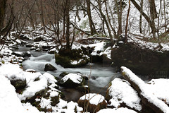 Ishikedo rapids (Elios.k) Tags: horizontal outdoors nopeople landscape scenery winter snow river oirase gorge oirasestream ishikedo rapids riverflowing flow slowshutter speed water towada towadakohankonoguchi nationalpark forest trees rock ice cold frozen weather nature path trail hiking colour color travel travelling december2017 vacation canon 5dmkii photography laketowada aomoriprefecture tōhokuregion tohoku honsu asia japan