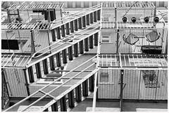 2019/007: The Fire Escape (Rex Block) Tags: thefireescape nikon d750 dslr 50mm f18g dc washington johnsonave apartment building fireescape ladders monochrome bw project365 365the2019edition 3652019 day7365 07jan19 2019fave