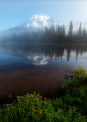 Misty Reflections (jojo (imagesofdream)) Tags: mountrainier rainier nationalparks landscapephotomag reflections
