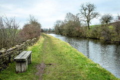 SJ1_4356 - Water-side seat (SWJuk) Tags: swjuk uk unitedkingdom gb britain england yorkshire northyorkshire eastmarton canal leedsliverpoolcanal towpath grass seat bench drystonewalls trees sky greysky clouds water landscape waterscape scenery 2019 jan2019 winter nikon d7200 nikond7200 nikkor1755mmf28 rawnef lightroomclassiccc