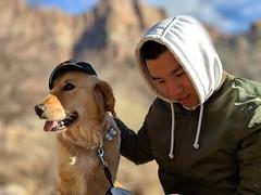 00100lPORTRAIT_00100_BURST20181228143716019_COVER (KevinXHan) Tags: zions national park dog golden retriever cute aww parus trail hike walk nature outdoors google pixel3 photoblog photodiary