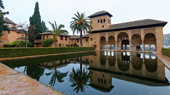 A wet morning in Alhambra - Torre de las Damas (HansPermana) Tags: granada spain spanien españa umayyad umayyadcaliphate eu europe europa südeuropa southerneurope iberianpeninsula alhambra palace kingdom garden reflection alandalus andalusia