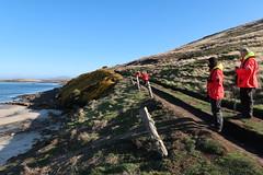 2018-102771 (bubbahop) Tags: 2018 antarcticatrip falklandislands newisland hike