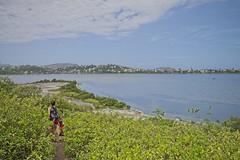 Chegando na praia da lagoa (mcvmjr1971) Tags: parnit ilha do pontal niteroi nikon d800e lens sigma 2435 art f20 mmoraes lagoa de piratininga
