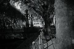 warm light of late autumn 5@KÖ, Düsseldorf, Germany (Amselchen) Tags: canonef50mmf14usm sonyilce7rm2 sony canon bokeh blur dof depthoffield bike bicycle city kö düsseldorf germany season autumn fall f14