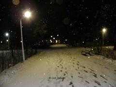 Snow in Bazilescu Park, Bucharest - with flash (cod_gabriel) Tags: snow zapada zăpadă ninsoare winter iarna iarnă bazilescu park parc parculbazilescu bazilescupark bucuresti bucurești bucharest bukarest boekarest bucarest bucareste romania roumanie românia night noapte
