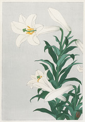 Lilies, Ohara ( 1920 - 1930) by Ohara Koson (1877-1945). Original from The Rijksmuseum. Digitally enhanced by rawpixel. (Free Public Domain Illustrations by rawpixel) Tags: pdproject21batch2x otherkeywords tagcc0 antique art asian drawing flower illustration japan japanese koson lilies museum name ohara oharakoson old paint rijksmuseum vintage