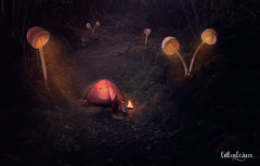 Camping at night (Raúl Teruel Diez) Tags: night fantasy magic mystic mattepainting dog art artist relax love picture photoshop photography graphicart visualart beauty beautiful raulterueldiez outlawdesigner universe illustration image imagination omg