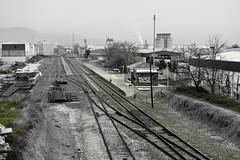 Las comunicaciones por tren con Granada (Micheo) Tags: granada spain queja complaint ferrocarril railway trenes abandono abandonedspain blancoynegro bnbw bwbn estacióndealbolote cutout andalucia españa