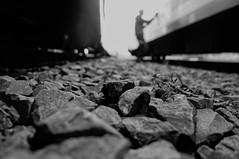 ([gegendasgrau]) Tags: schotter gravel steine stones bokeh portrait portraitfoto portraitphoto people bw sw schwarzweiss blackwhite writer artist nrw ruhrpott ruhrgebiet ruhryork photography fotografie explore mood moody ambiance atmo atmosphere atmosphäre feeling flavour documentation dokumentation reportage lifestyle umwelt environment wetter weather stimming beautiful licht light shadow schatten silhouette gleise tracks rails schienen trainyard eisenbahn railway trainbombing urban urbanlife urbandecay decay graffiti vandalism vandalismus spraypaint perspective perspektive person lowpov railroad train zug monochrome monochrom