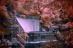 Parque Nacional Barranca del Cupatitzio (Delfino Photography) Tags: nature uruapan michoacán parks parquesnaturales barrancadelcupatitzio infraredphotography infrared infraredphoto infraredworld infraredcamera hoyar72 waterfall cascada