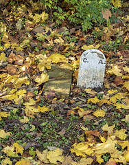 C. A. (will139) Tags: cemeteries graves gravemarker tombstone campatterbury