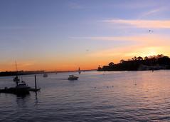 010 Sailor's Delight (saschmitz_earthlink_net) Tags: 2018 california marinadelrey boat parade marinadelreyboatparade christmasparty suez