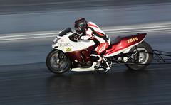 Turbo Blackbird_3676 (Fast an' Bulbous) Tags: bike biker moto motorcycle fast speed power acceleration drag strip race track outdoor nikon panning dragbike racebike