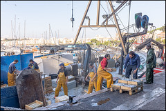 Unloading The Catch | Blanes, Catalonia (Flemming J. Gade) Tags: fishermen unloading fishingboat fish harbour portdeblanes blanes catalonia