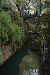 DSC_1899 (Hong Z) Tags: china nikond700 28300mmf3556 suzhou 苏州 travel garden 园林