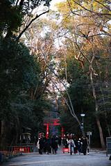 SDQ_1123 (koyaman3422) Tags: 京都 kyoto sigma sdquattro 1770mm 下鴨神社