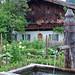 Garmisch - Altstadt (Fußgängerzone) (12) - Bauerngarten an der Fußgängerzone