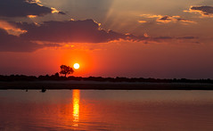 Beautiful sunset (Thomas Retterath) Tags: thomasretterath nature natur 2018 safari nopeople fluss chobe botswana africa afrika river wildlife rot red himmel sky horizont horizon sonnenstrahlen sun sonne sunrays sundown sonnenuntergang sunset wolken clouds