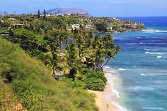 Beach Side Homes, Coconut Palms & Beaches, Honolulu, Hawaii, USA (Black Diamond Images) Tags: easternoahushorelinetour enoatours honolulu hawaii usa beachsidehomes coconutpalms beaches beach usabeaches westernusatrip2018 2018 canond60 1770 sigma1770 hawaiianbeaches