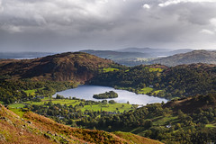 Enclosed (Rico the noob) Tags: 2018 d850 lakedistrict 2470mm nature outlook city outdoor lake 2470mmf28 clouds trees urban published tree uk forest house urbanexploration sky grass dof horizon landscape water
