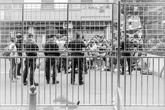 DSC_4147 (Christian Taliani) Tags: 2017 blasco christiantaliani ferrari modena modenapark parco parcoferrari vasco vascorossi street rock musica music people streetphoto streetphotography 1luglio