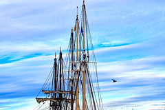 When the angels decide to paint (Fnikos) Tags: sky cloud blue white ship boat mast mástil seagull outdoor