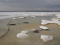 Cold Waters (Axiraa) Tags: estonia winter snow water ice türisalu sea baltic