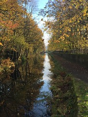 Canal (touring_fishman) Tags: canal walk november 2018 huddersfield narrow huddersfieldnarrowcanal autumn colors colours trees slaithwaite