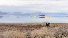 20140123_mono_lake_024 (petamini_pix) Tags: monolake california lake reflection landscape water paohaisland