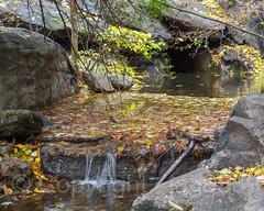 The Gill Stream, Central Park, New York City (jag9889) Tags: 2018 20181117 cp cascade centralpark gill landmark manhattan ny nyc nycparks newyork newyorkcity outdoor park ramble source stone stream usa unitedstates unitedstatesofamerica water waterfall jag9889