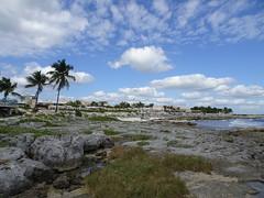 TRS hotels, Yucatan (Liti Haramaty) Tags: mexico riviera maya 2018 vacation trs yucatan beach palm trees sky clouds rocks