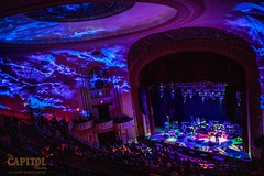 Edie Bickel and the New Bohemians 11.8.18 the cap photos by chad anderson-9421 (capitoltheatre) Tags: thecapitoltheatre capitoltheatre thecap ediebrickell newbohemians ediebrickellnewbohemians housephotographer portchester portchesterny livemusic