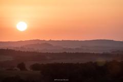Lumières éphémères 2. (Thomas Ricaut) Tags: coucher de soleil sunset orange lumieres ephemeres horizon sun campagne canon canon80d sigma 70200 contre jour beauté du ciel