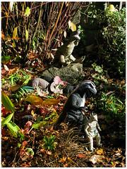 Godzilla Say Fall Long This Year (prima seadiva) Tags: jurplasticpark light mygarden november shadow sunny dinosaur godzilla