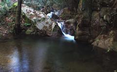 La Balsa II (candi...) Tags: riera agua corriente saltodeagua naturaleza nature airelibre sonya77
