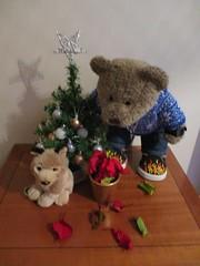 Pefki! Wot yew dun now???! (pefkosmad) Tags: tedricstudmuffin teddy ted bear animal cute cuddly toy fluffy plush soft stuffed pefki dog pet poinsettia plant potplant christmas advent winter winterval december