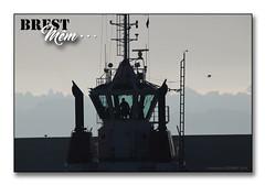 Brest, port de commerce 2018 - Les Remorqueurs ... (porte-plume) Tags: brest port