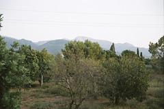 mountain views (MADAME JULES) Tags: 35mm film analog canoneos1v