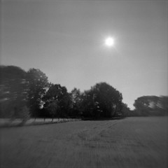 High noon in November (Rosenthal Photography) Tags: ff120 asa125 landschaft 6x6 agfaclicki anderlingen hinterhof epsonv800 mittelformat wiese städte ilfordfp4 feld 20181201 schwarzweiss analog ilfordrapidfixer dörfer siedlungen landscape noon autumn november backyard flippedlens mood blackandwhite agfa click click1 meniscus 725mm f88 ilford fp4 fp4plus lc29 129 epson v800