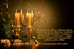 4cf164a3-159d-4589-a472-91b22c53bce0 (yu.n.v) Tags: champagne christmas eve celebrate gold holiday festive alcohol anniversary bottle glass celebration happy crystal party wine gift romantic sparkle background ribbon backgroundchristmas beverage liquid bow bubbly box new card cardchristmas cheers love congratulations christmasgreeting christmaslight drink christmasmerry christmaspattern design tree golden year happynewyear occasion light merry newyear toast night winter