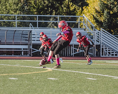 2018WP7-NWCOUGHM1875 (sumnervalleywolfpack) Tags: action activity athletics daylight football footballorganization outdoorsports outdoors performance practice recreation sportsgame sportsphotography teambuilding teamplayer teamspirit teamsports washingtonfootball wolfpack youthsports 98390 washington usa
