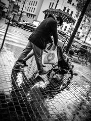 transport en commun (Jack_from_Paris) Tags: p1000656bw panasonic dmcgx8 pancake14mmf25asph pancake wide angle micro 43 raw mode dng lightroom capture nx2 rangefinder télémétrique bw noiretblanc monochrom street paris passants piétons pluie reflet rain enfants children poussette