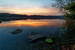 Burgäschisee sunset (Tjaldur66) Tags: lake lakeshore sunset switzerland solothurn rocks water evening eveninglight eveningmood summer clouds reflection tranquility summerevening burgäschi colours