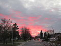 ** 8 novembre 2018 ** (Impatience_1(très peu présente)) Tags: ciel sky coucherdesoleil sunset rose arbre tree rue street m impatience nuage cloud le supershot coth coth5 abigfave sunrays5 groupenuagesetciel