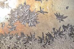 Oiseaux de givre. (nicoleforget) Tags: vitre givre motifs dessins oiseaux lumière