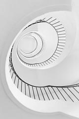 Interior Architecture of the Deutsches Museum (hjuengst) Tags: treppe treppenhaus stairs staircase spiralstaircase wendeltreppe münchen munich architektur architecture blackandwhite schwarzweis deutschesmuseum