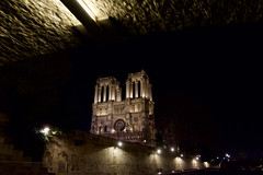 Notre Dame from under the bridge on the Seine (Jason Rosenberg) Tags: notredame france cathedrals overpass underpass tunnel bridge seine church river tourism light nighttimephotography nightphotography riverboattour outdoors outside paris parisfrance nikon nikond5200 sightseeing tours framing