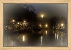 LAKE IN WINTER (Viktor Manuel 990.) Tags: lake lago winter invierno lights luces reflections reflejos digitalart artedigital trees arboles night noche querétaro méxico victormanuelgómezg