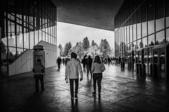 Enter, Women's March (Spokane, WA) (santanathemana) Tags: black white blackandwhite abstract contrast womensmarch march protest women entry beginning people streetphotography street photography amazing creative surreal shiny reflection